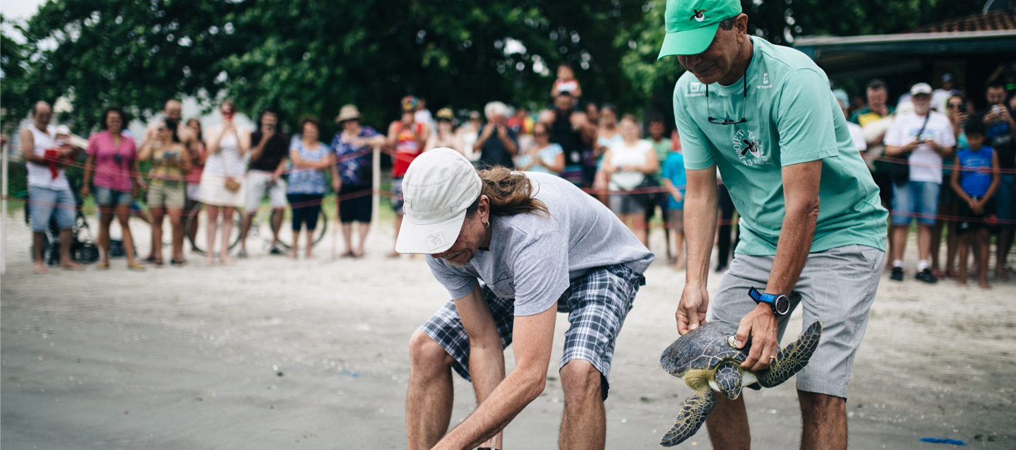 Releasing of the sea turtles with Guy Marcovaldi (Tamar founder) and Brazilian singer Lenine