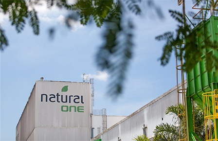 Natural One Factory