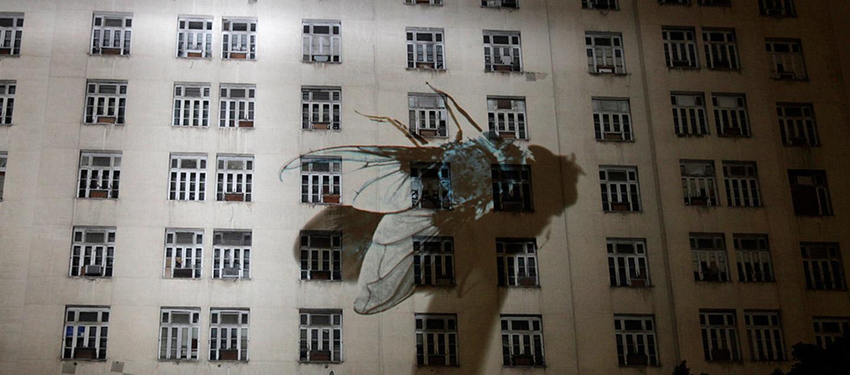 Projeto Visualismo Arte Tecnologia e Cidade, obra Surveillance, Regina Silveira